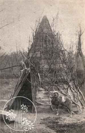 Харьковский зоопарк прошлого века