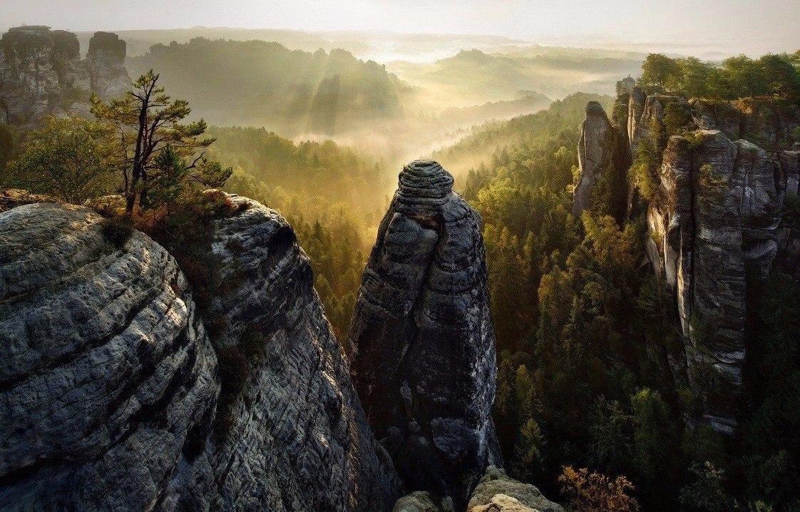 Каменный лес, Германия
