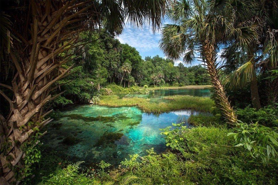 Прекрасный пейзаж Флориды, США