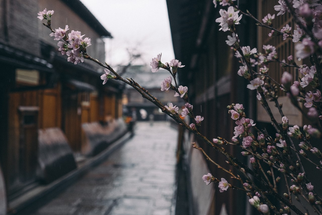 Japan by RECO