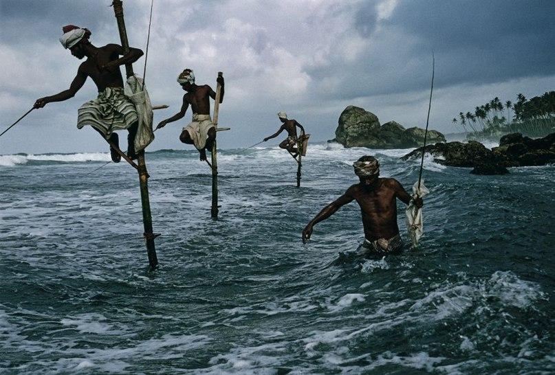 10 лучших фотографий из 125-летней истории National Geographic