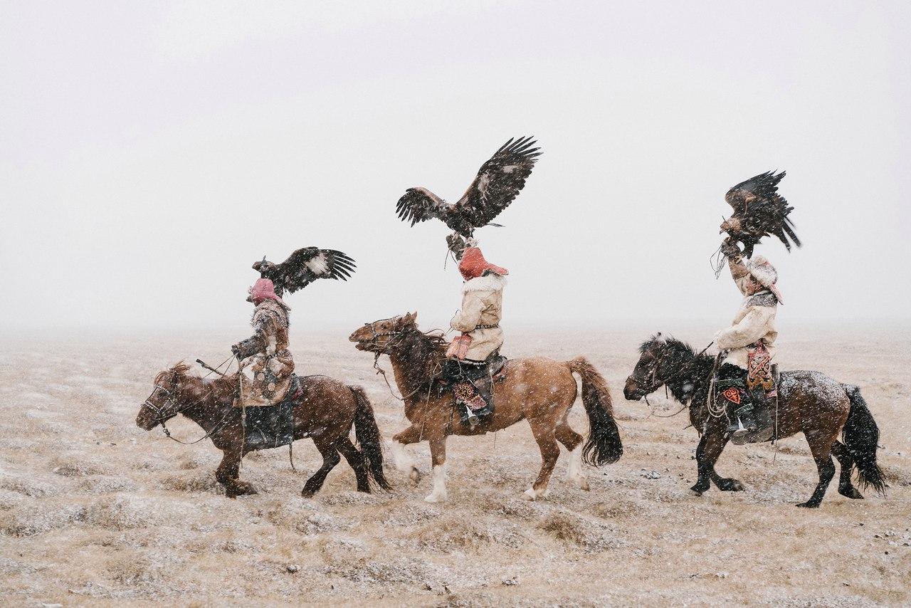 Беркутчи, Охотники в Монголии