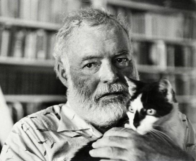 "cat in the rain ernest hemingway The most important characters in the short story ""cat in the rain"" by ernest hemingway are the american wife and her husband, george the maid and the hotel owner are secondary characters in the narra ()."