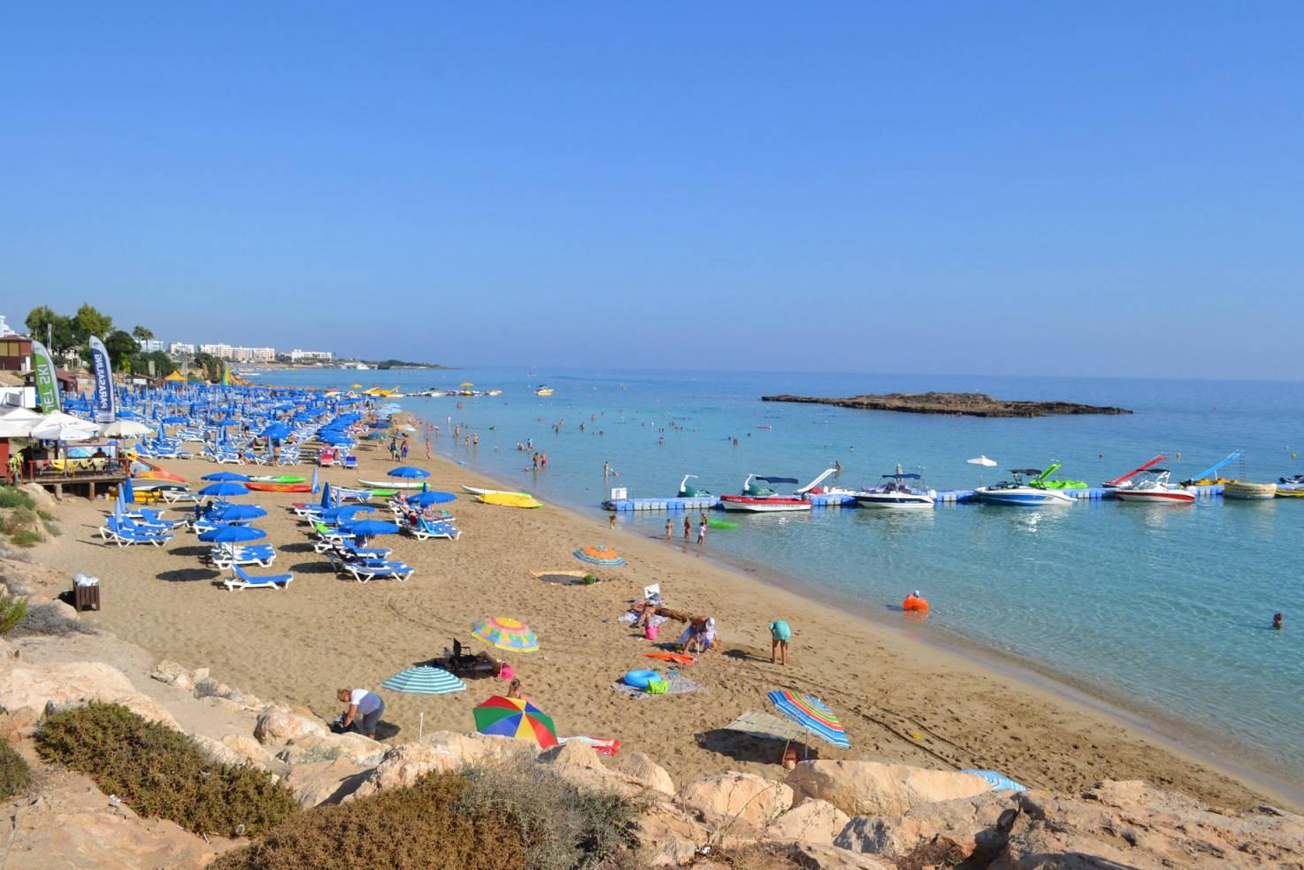 организациях ип, пляж фигового дерева фото показывает, что проект